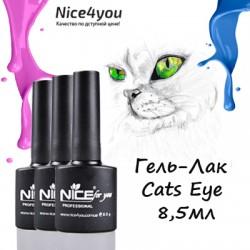 Nice Cats Eye