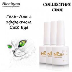 Nice Cool Cats Eye