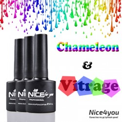 Nice Vitrage & Hamelion