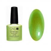 CND Shellac Limeade